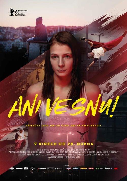 AniVeSnu_poster_web
